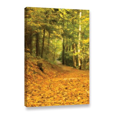 Forest Path Painting Print on Wrapped Canvas Size: 12