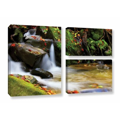 Timeless Forest 3 Piece Photographic Print on Wrapped Canvas Set