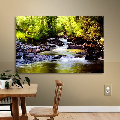 Woodland Brook Photographic Print on Wrapped Canvas