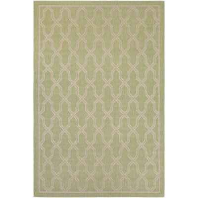 Arnot Green/Cream Indoor/Outdoor Area Rug Rug Size: Runner 27 x 119