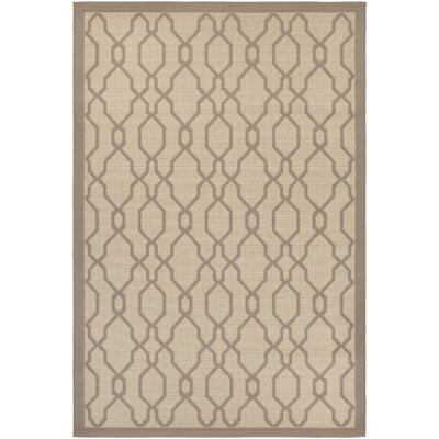Arnot Cream/Gray Indoor/Outdoor Area Rug Rug Size: 3'11