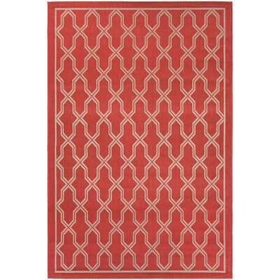 Arnot Red/Cream Indoor/Outdoor Area Rug Rug Size: Runner 27 x 119