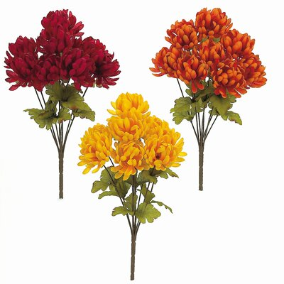 Autumn Ball Mum Bush (Set of 12)