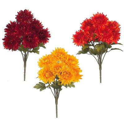 Mum Assortment Bush Flowers (Set of 6)
