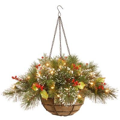 Pine Pre-Lit Round Hanging Basket