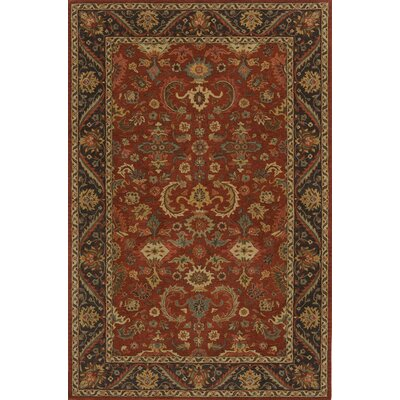 Dearborn Hand-Tufted Pomegranat Area Rug Rug Size: Rectangle 76 x 96