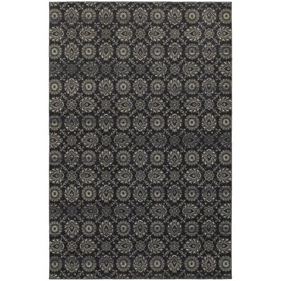 Debord Navy/Gray Area Rug Rug Size: Rectangle 53 x 76