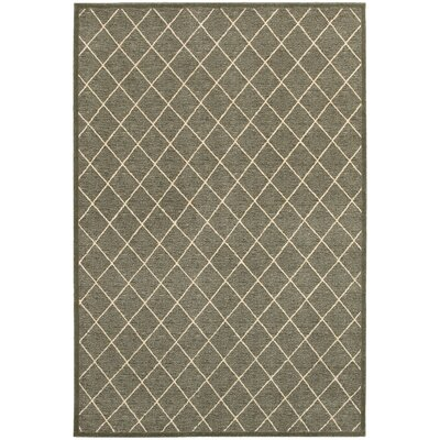Decaro Gray/Ivory Trellis Area Rug Rug Size: 910 x 1210
