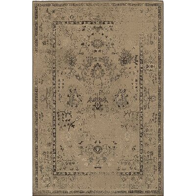 Bingley Tan/Brown Area Rug Rug Size: Rectangle 910 x 1210