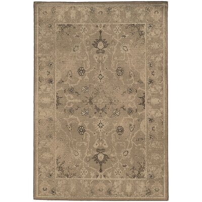 Bingley Tan/Gray Area Rug Rug Size: 910 x 1210
