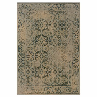 Bingley Traditional Beige/Blue Area Rug Rug Size: 53 x 76