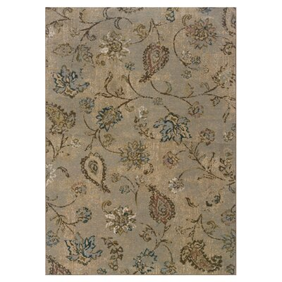 Warrensville Blue/Beige Area Rug Rug Size: 53 x 76