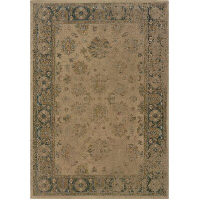 Bingley Beige/Blue Area Rug Rug Size: 53 x 76