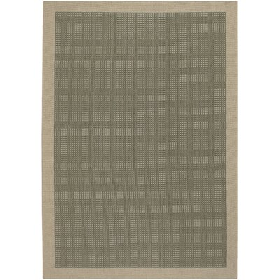 Jan Green Area Rug Rug Size: Runner 23 x 119