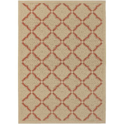 Blackburn Trellis Cream Indoor/Outdoor Area Rug Rug Size: Rectangle 37 x 55
