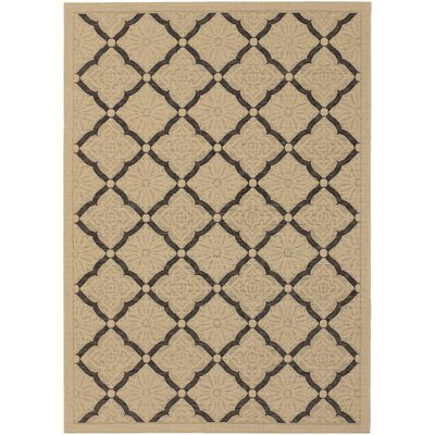 Blackburn Cream Indoor/Outdoor Area Rug Rug Size: 37 x 55
