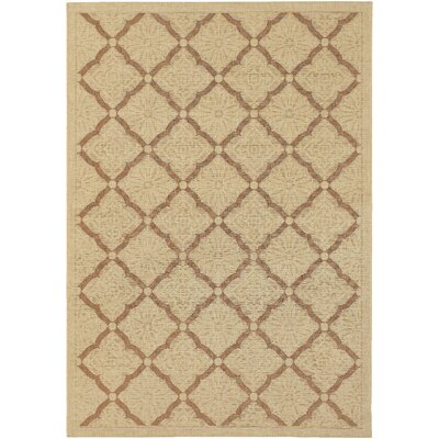 Carriage Brown Indoor/Outdoor Area Rug Rug Size: Runner 23 x 710