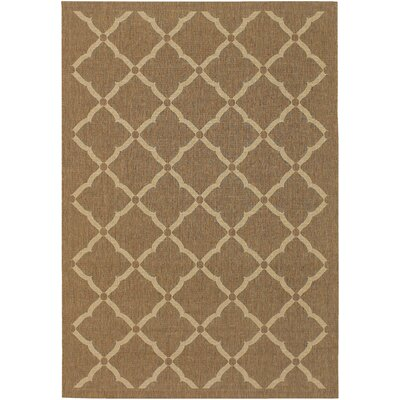 Carriage Brown Indoor/Outdoor Area Rug Rug Size: 37 x 55