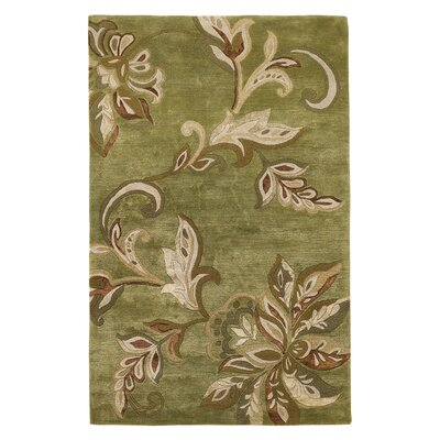 Millersville Green Area Rug Rug Size: Rectangle 5 x 8