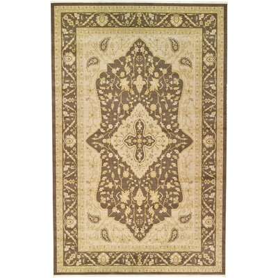 Normanson Brown Area Rug Rug Size: 106 x 165