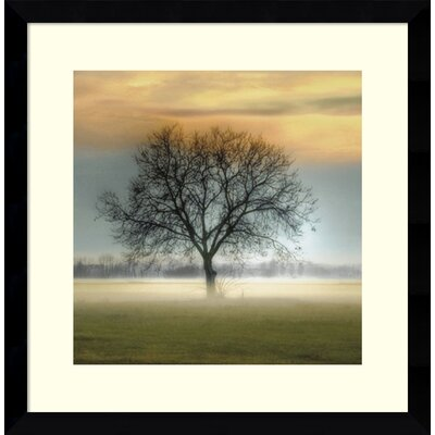 'Misty Silhouette' Framed Photographic Print