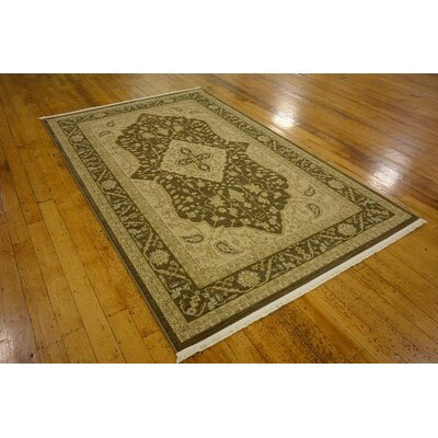 Stinson Brown Area Rug Rug Size: 3'3