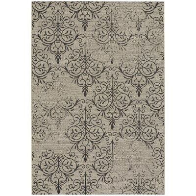 Boyster Indoor/Outdoor Area Rug Rug Size: 53 x 76
