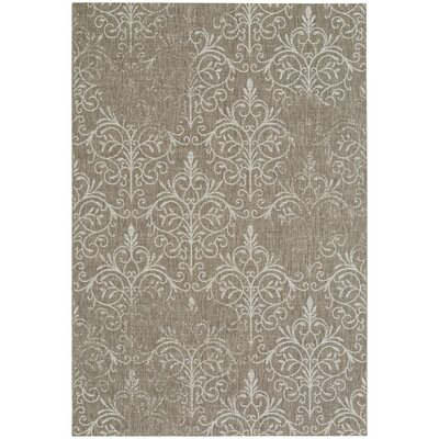 Boyster Wheat Indoor/Outdoor Area Rug Rug Size: 53 x 76