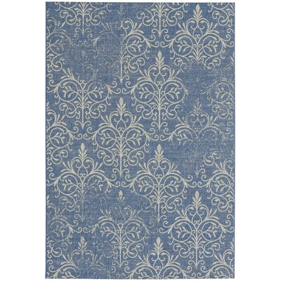 Boyster Blueberry Indoor/Outdoor Area Rug Rug Size: 53 x 76