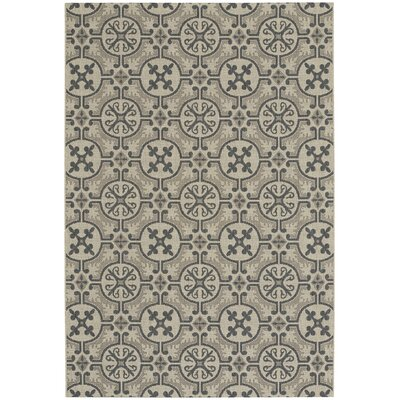 Bainsbury Coal Indoor/Outdoor Area Rug Rug Size: 53 x 76