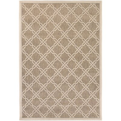 Arnot Gray/Cream Indoor/Outdoor Area Rug Rug Size: Rectangle 311 x 55