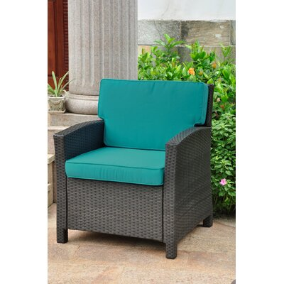 Binney Wicker Resin Contemporary Patio Chair with Cushion