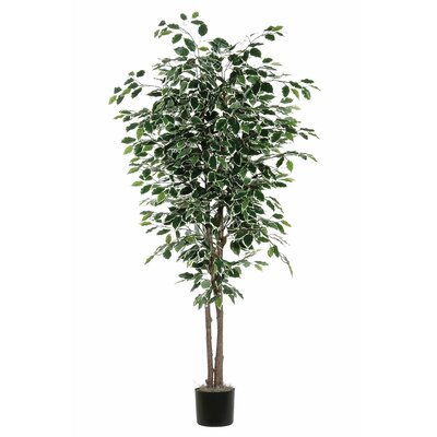 Artificial Foliage Variegated Deluxe Tree in Pot
