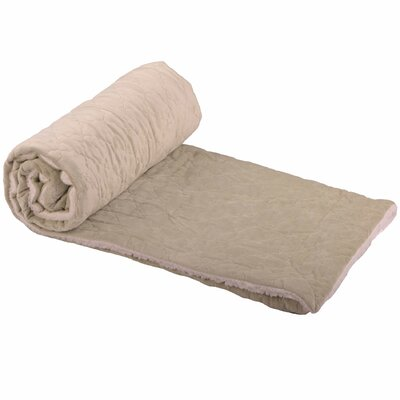 Dawson Micromink Embroidery Throw Blanket Color: Light Green