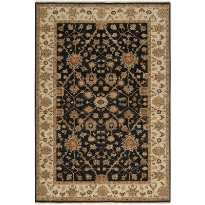 Derosier Black Area Rug Rug Size: Rectangle 2' x 3'
