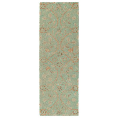Barker Ridge Handmade Turquoise Indoor/Outdoor Area Rug Rug Size: Runner 2 x 6