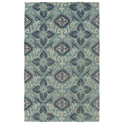 Dittmar Handmade Teal/Silver Indoor/Outdoor Area Rug Rug Size: Rectangle 9 x 12