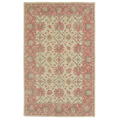 Dittmar Handmade Watermelon Indoor/Outdoor Area Rug Rug Size: 9 x 12