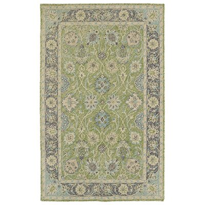 Dittmar Handmade Lime Green Indoor/Outdoor Area Rug Rug Size: Rectangle 4 x 6