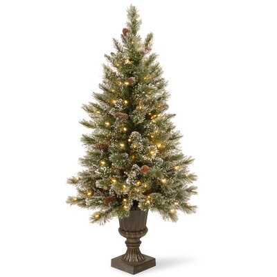 Garcia Pine Pre-Lit 4' Artificial Christmas Tree