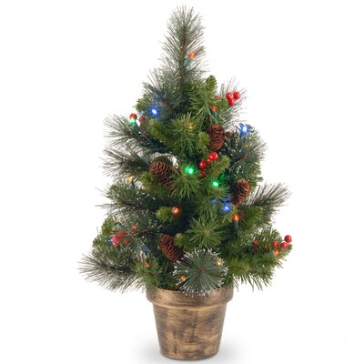 Cambridge Spruce 2' Artificial Christmas Tree with Multicolored Lights