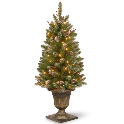 4' Green Spruce Artificial Christmas Tree with 70 Colored & Clear Lights