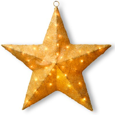 Sisal Star Christmas Decoration Color: Gold