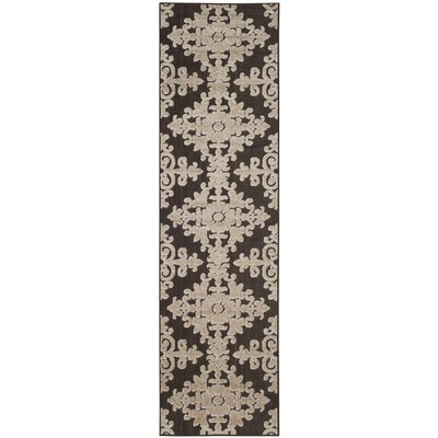 Clarence Indoor/Outdoor Area Rug Rug Size: Runner 23 x 8