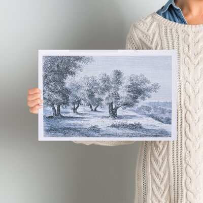 'Olive Grove 1860 Engraving' Painting Print on Wrapped Canvas Size: 10