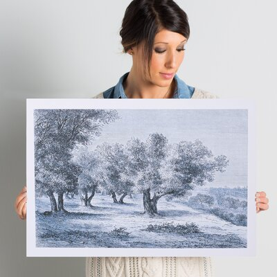 'Olive Grove 1860 Engraving' Painting Print on Wrapped Canvas Size: 16