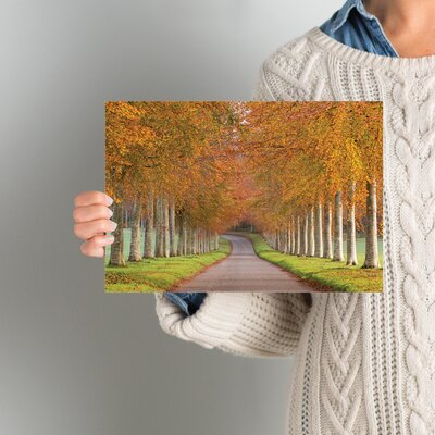 Autumn Splendour Photographic Print on Wrapped Canvas Size: 8