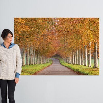 Autumn Splendour Photographic Print on Wrapped Canvas Size: 40