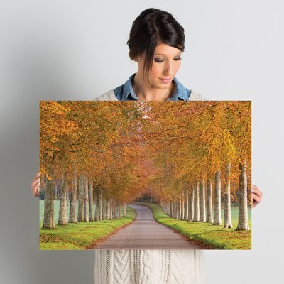 Autumn Splendour Photographic Print on Wrapped Canvas Size: 18