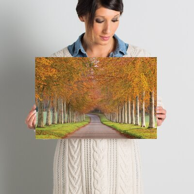 Autumn Splendour Photographic Print on Wrapped Canvas Size: 12